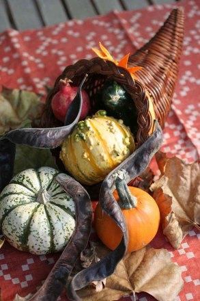 Make a Thanksgiving Cornucopia Activity Educationcom