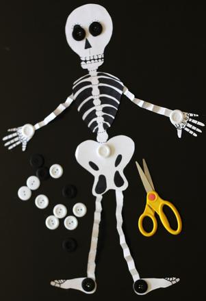 Make an Accordion Skeleton Activity