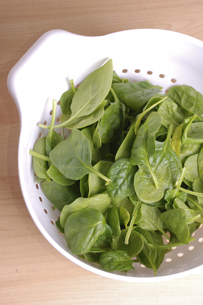 Extract DNA from Spinach Activity
