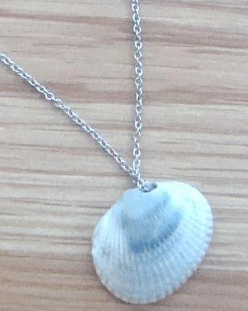 seashell necklace craft activity education