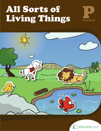 how to write autobiography of non living things