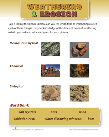 Can you dig it rocks and soil printable workbook for Soil 2nd grade