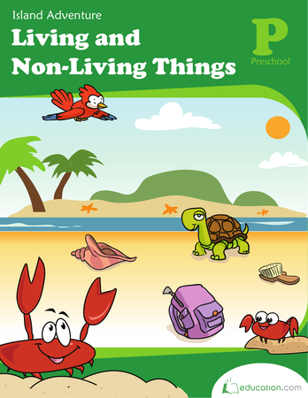 living and non living things island adventure workbook. Black Bedroom Furniture Sets. Home Design Ideas